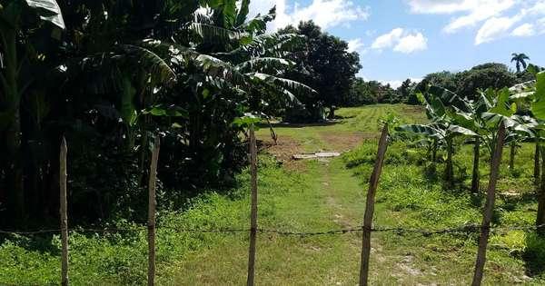 Terreno  de 2 caballerías por $ 12.000 en Cienfuegos, Cienfuegos