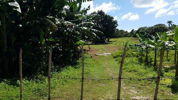 Picture on Terreno de 2 caballerías por $ 12.000 en Cienfuegos, Cienfuegos