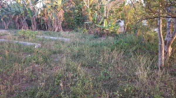 Terreno  0 por $ 8.000 en Viñales, Pinar del Río