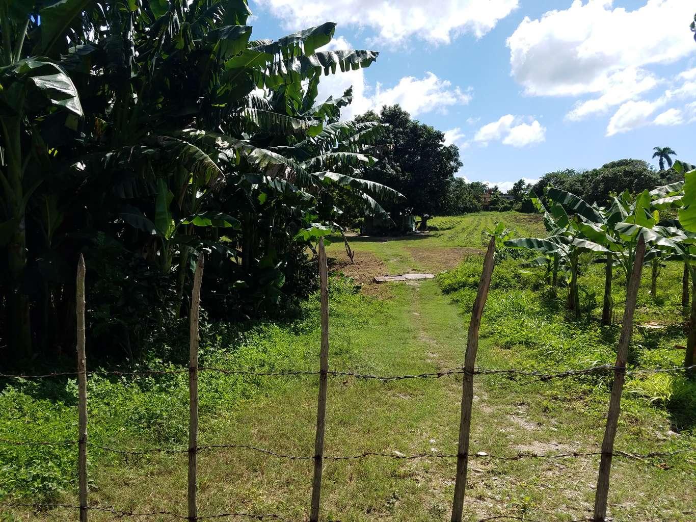 HEC1035: Terreno de 2 caballerías por $ 12.000 en Cienfuegos, Cienfuegos
