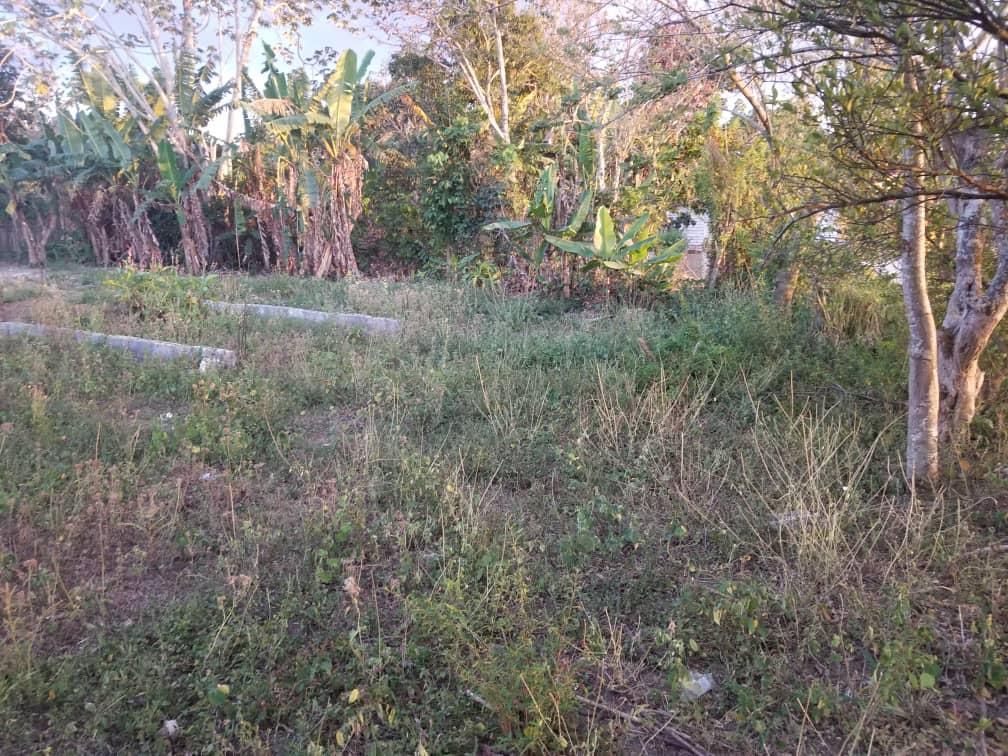 HEC1339: Terreno 0 por $ 8.000 en Viñales, Pinar del Río