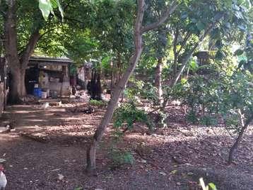 Terreno en venta en Cienfuegos  289 metros cuadrados por 2.000,00$