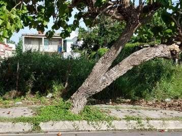 Terreno en venta en Cienfuegos  200 metros cuadrados por $25,000